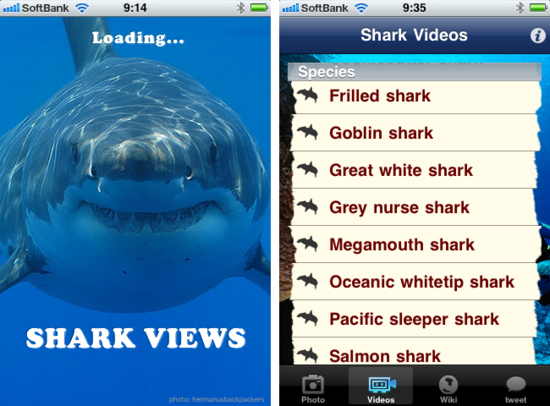 sharkviews1.png